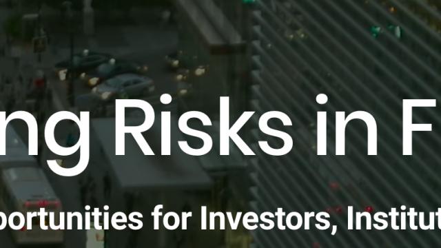Emerging-Risks.png