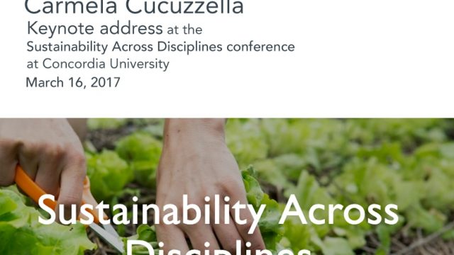 sustainability-across-disciplines_1_orig.jpg